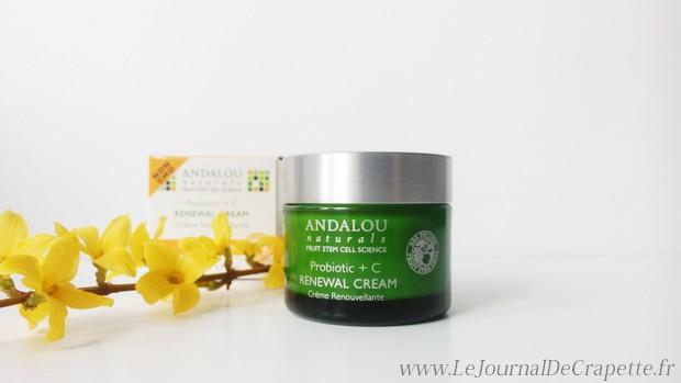 andalou_renewal_cream000