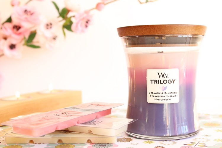 woodwik_trilogy_wild_berry_smoothie_tarts00