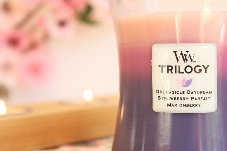 woodwik_trilogy_wild_berry_smoothie_tarts02