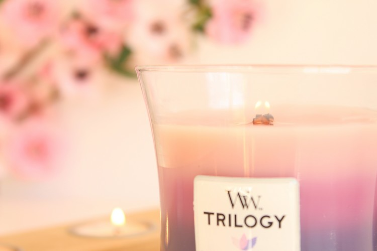 woodwik_trilogy_wild_berry_smoothie_tarts03