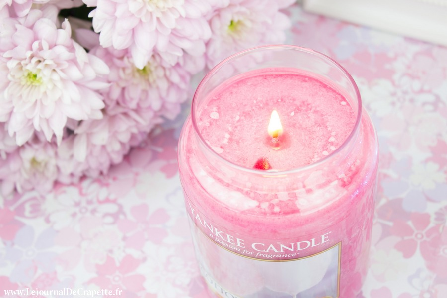 cotton-candy-yankee-candle-bougie-parfumee-barbe-a-papa-06