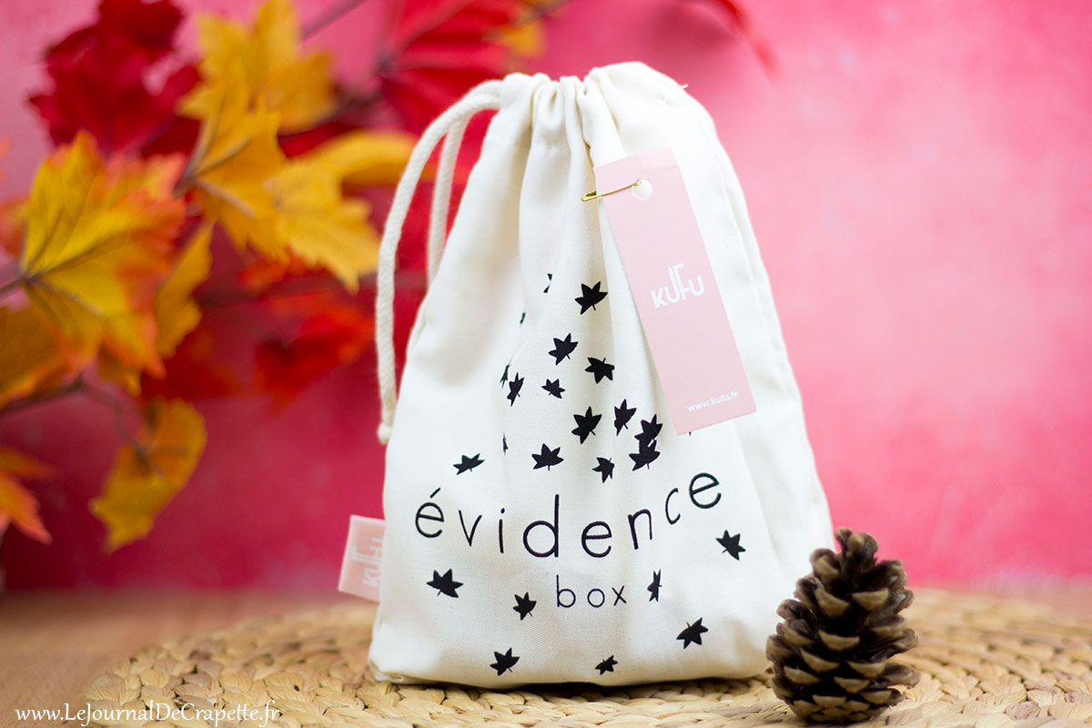 evidence-box-novembre-2017