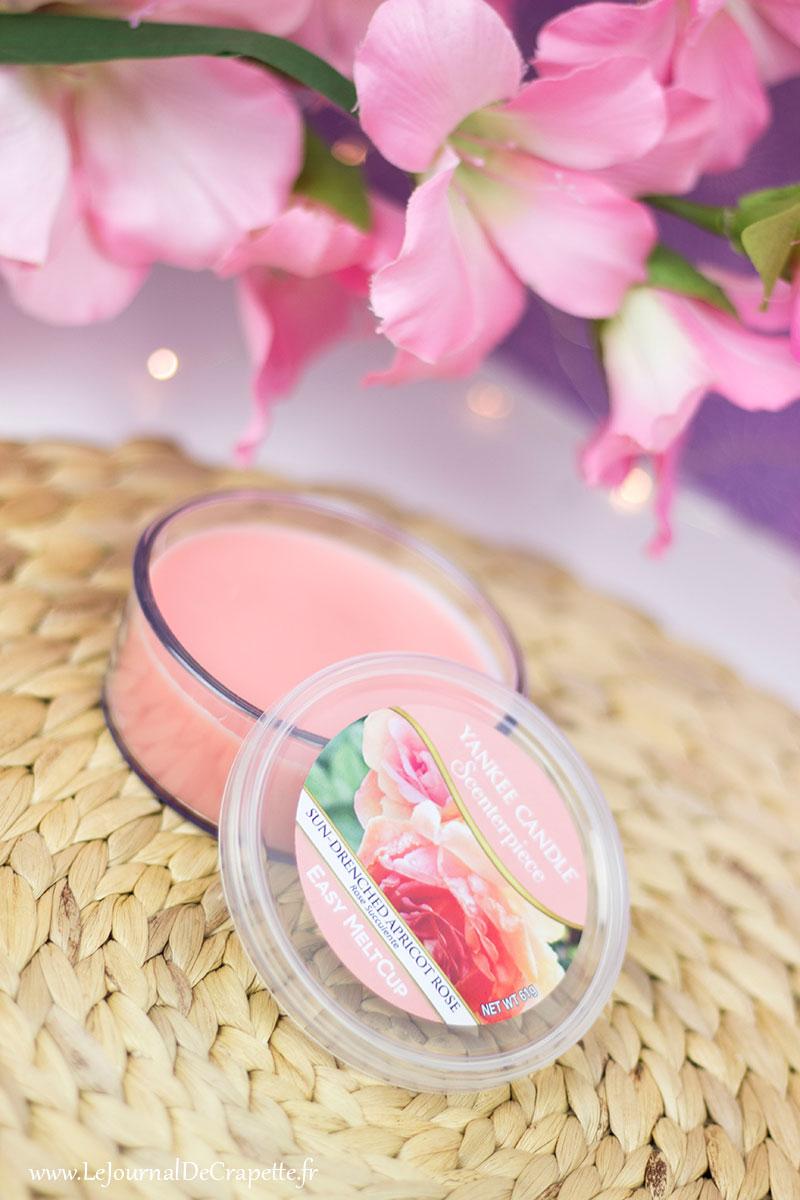 rose-succulente-yankee-candle