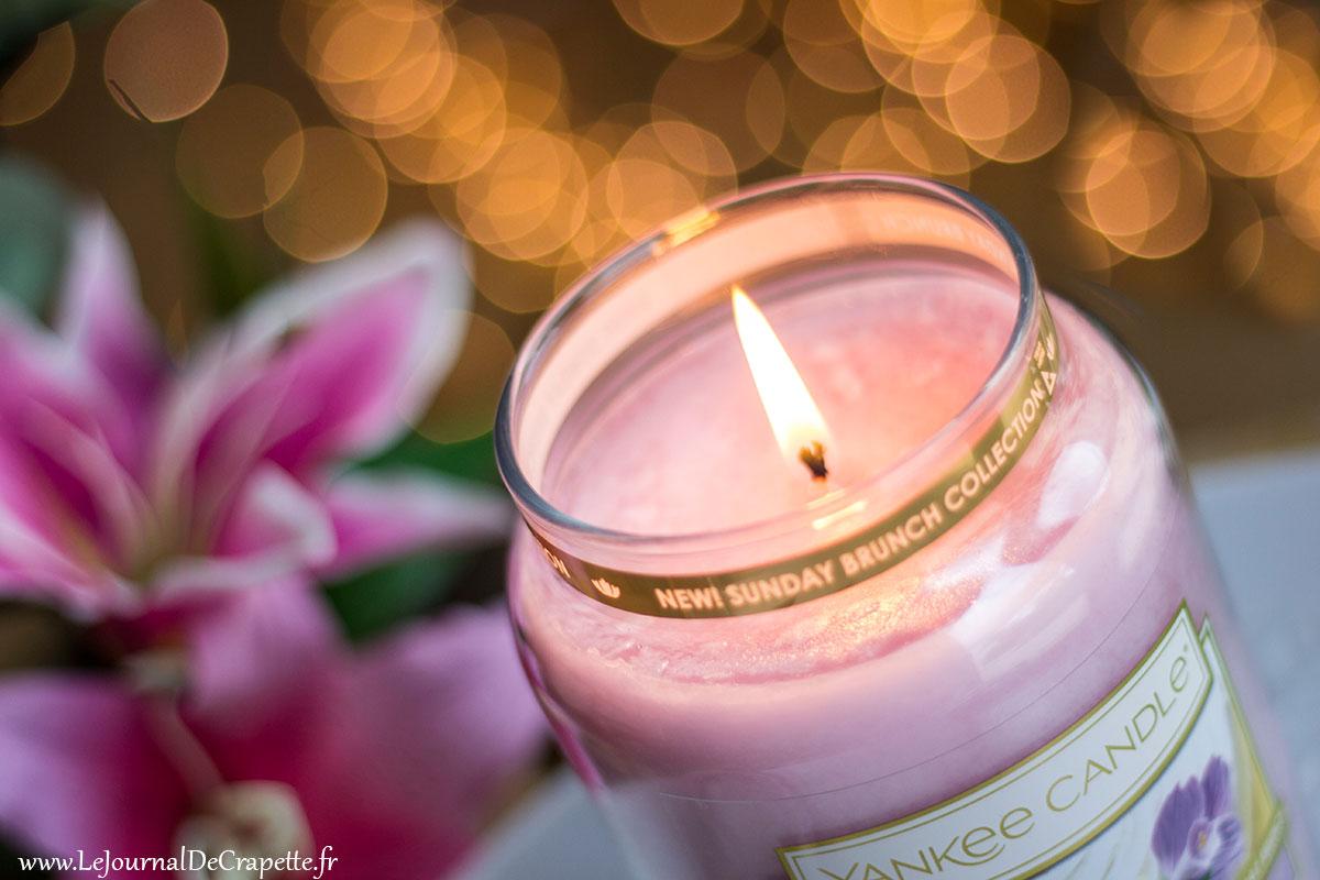 fleurs en sucre Yankee Candle